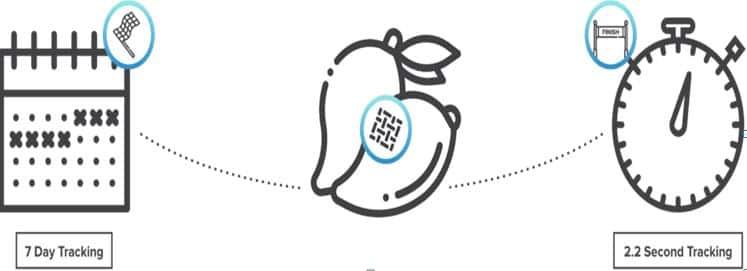 Hyperledger Fabric's blockchain infrastructure