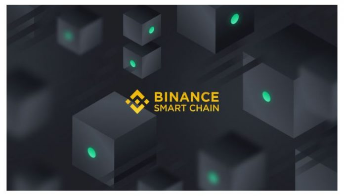 top binance smart chain tokens