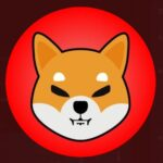 Argentine Real Estate Agency Now Accept Shiba Inu